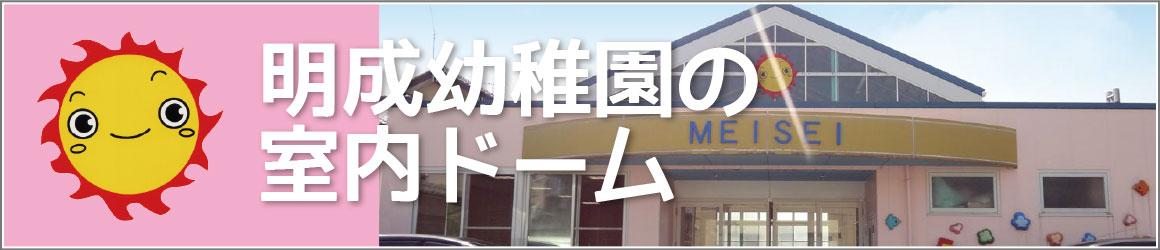 明成幼稚園の室内ドーム